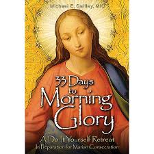 This book is excellent for true devotion to Mary.