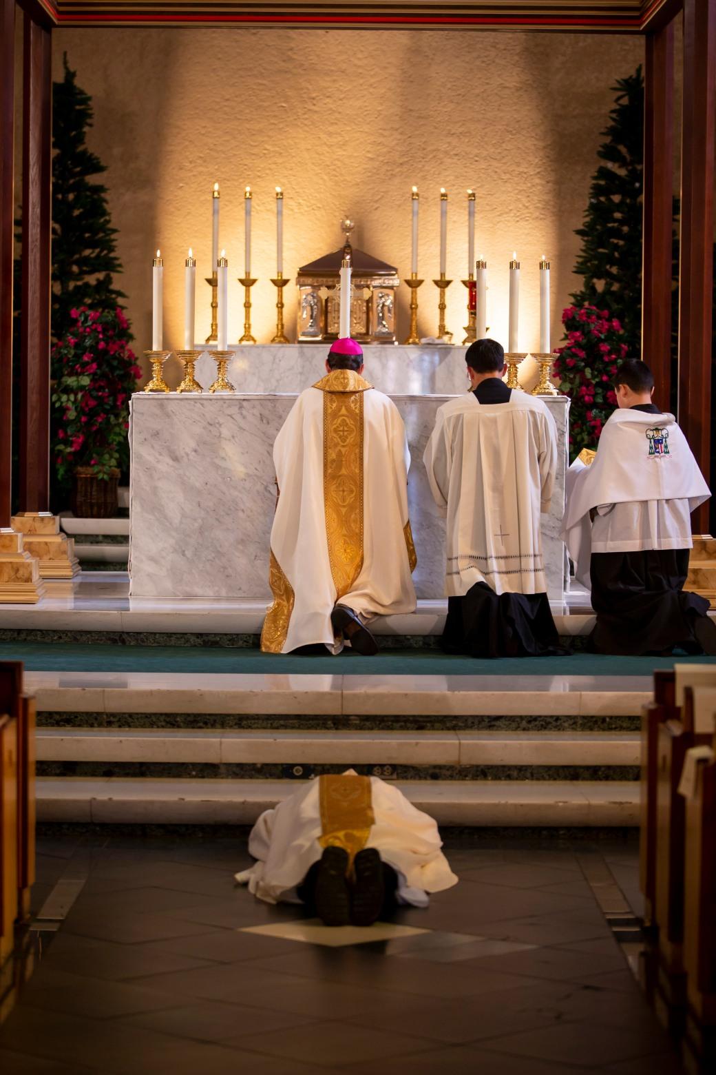 Diocesan_Hermit_26
